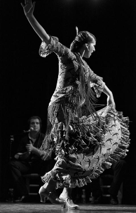 festival-flamenco-granada-fotografia-14