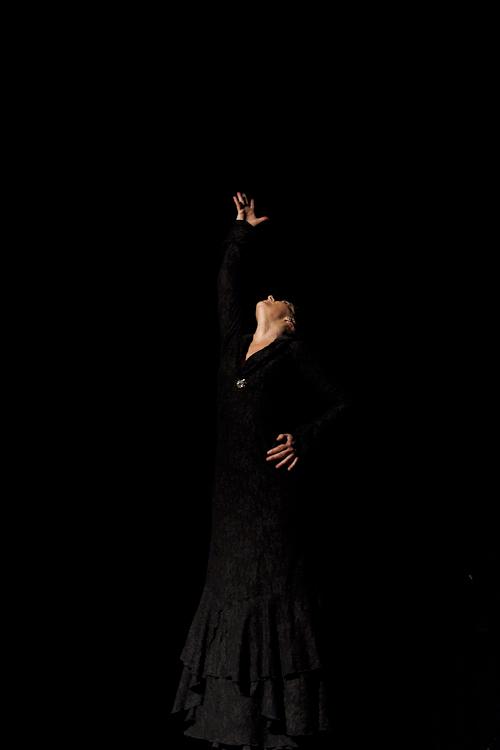 festival-flamenco-granada-fotografia-2