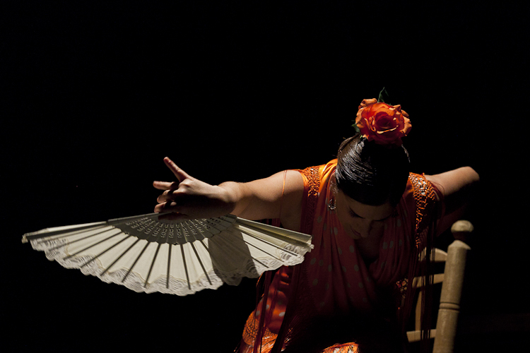 festival-flamenco-granada-fotografia-4