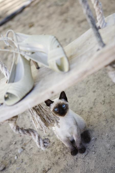 zapatos_novia_boda_detalles_preparativos_nuevo_y_azul-014
